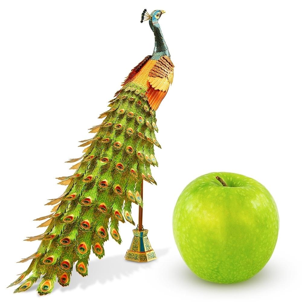 Iconx Peacock
