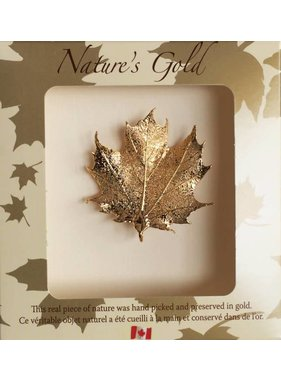Nature's Gold Maple Leaf Maple leaf Brooch - Gold  plated