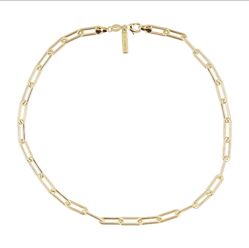 Sahira Carrie Link Necklace