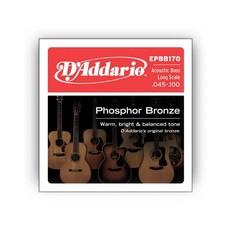 D'Addario NEW D'Addario EPBB170 Phosphor Bronze Acoustic Bass Long Scale, .045-.100