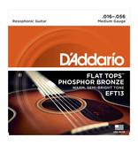 D'Addario NEW D'Addario EFT13 Flat Tops Phosphor Bronze Resonator Strings -  Medium - .016-.056