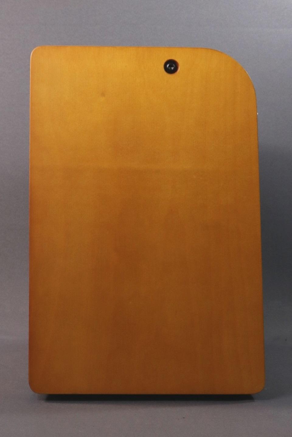 Fender DEMO Fender Acoustic 100 (335)