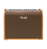 Fender NEW Fender Acoustic 100 (345)