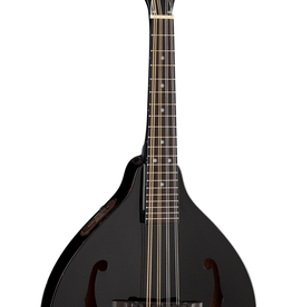 Dean NEW Dean Tennessee Acoustic-Electric Mandolin