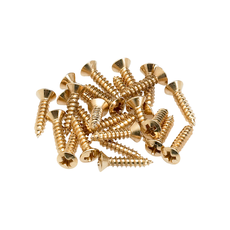 Fender NEW Fender Pickguard/Control Plate Mounting Screws - Gold - Pack of 24