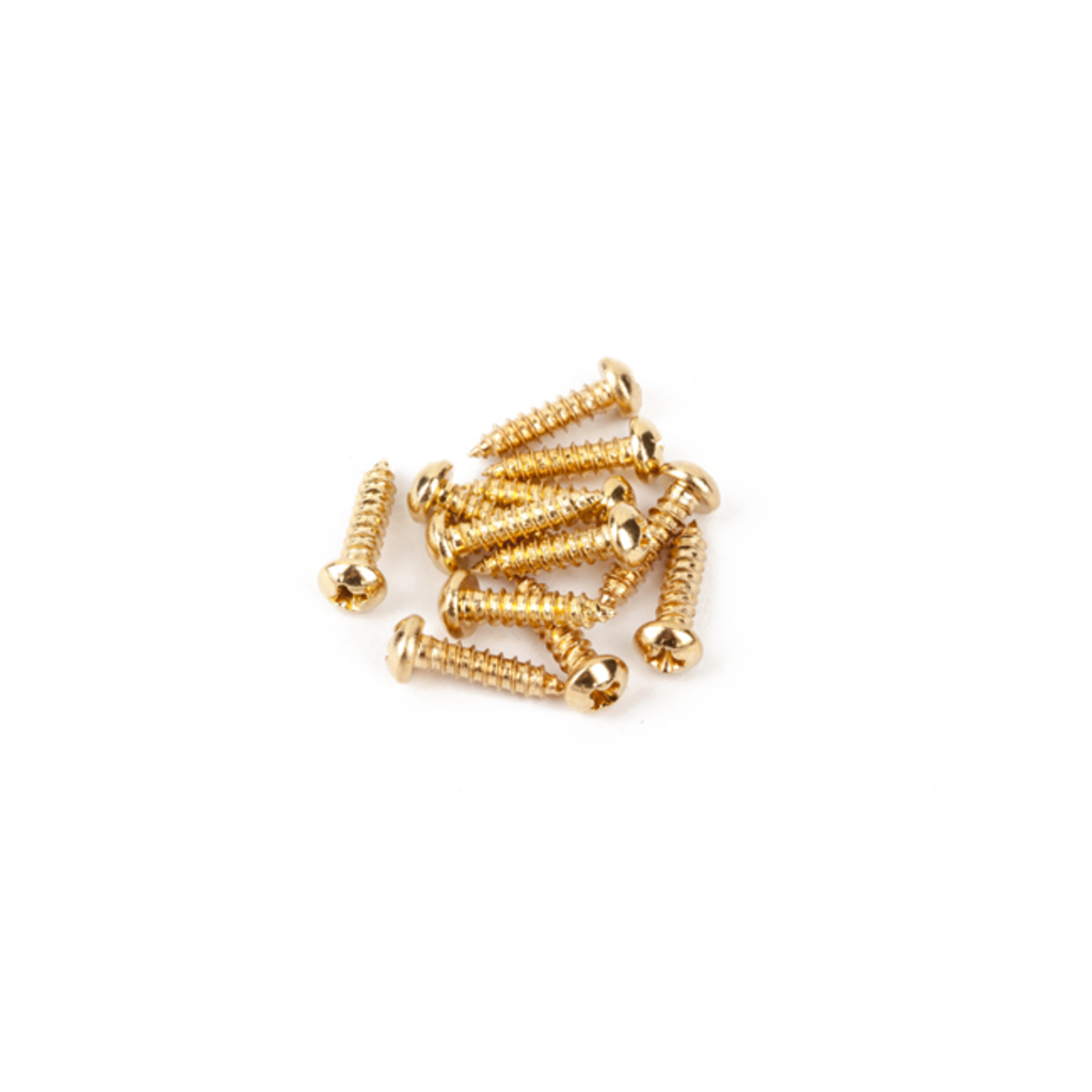 Fender NEW Fender Pure Vintage Tuning Machine Mounting Screws - Gold - Pack of 12