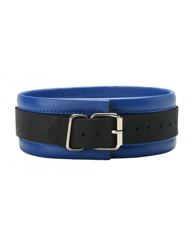 Collar: Black/Blue Leather
