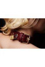 Burgundy and Gold Lockable Collar