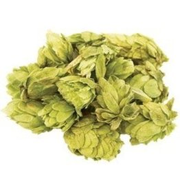 Saaz Whole Hops 2 OZ (Czech)
