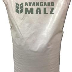 Avangard Avangard Dark Munich Malt