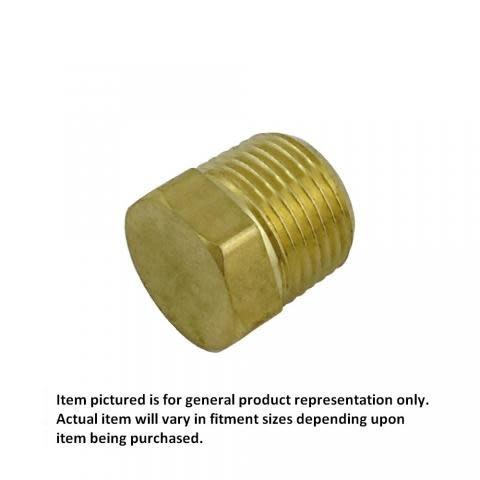"""Foxx Equipment Company Hex Plug 1/4"""" MPT (Brass)"""