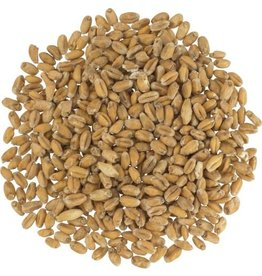 Briess Briess Red Wheat Malt