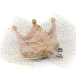 PETITE HAILEY Pink Crown Hair Clip