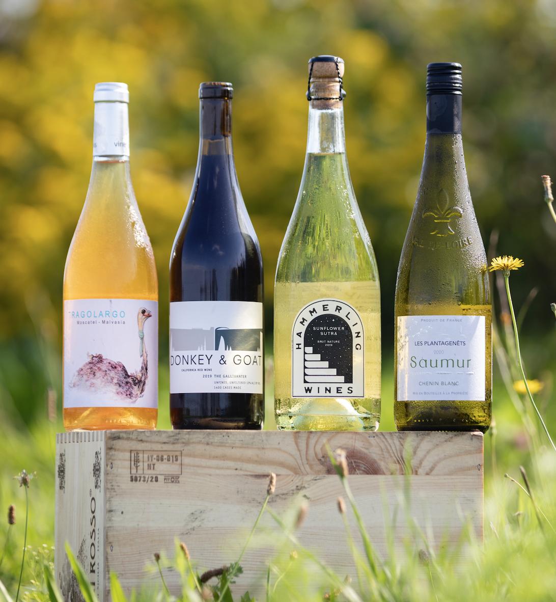 Cheers to Charities - October Wine 4pk