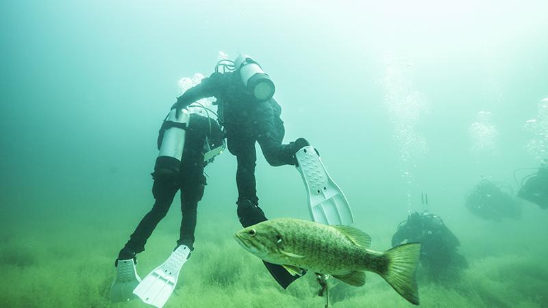 Plongeurs sous l'eau à la carrière Kahnawake