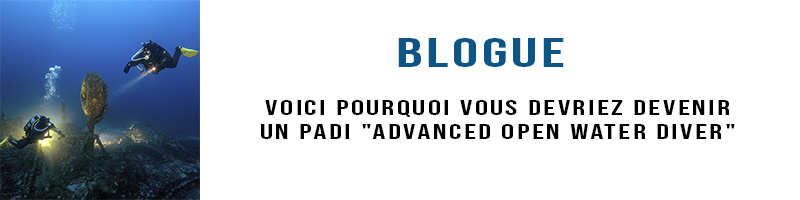 blogue cours avancé