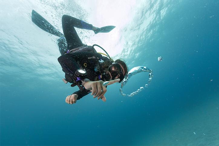 Théorie en ligne, plongées en piscine et plongées avec certification PADI à Montréal.