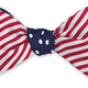 R. Hanauer, Inc. RHA - Bow Tie - Dots/Stripes Combo