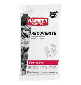 Hammer Nutrition Hammer Recoverite