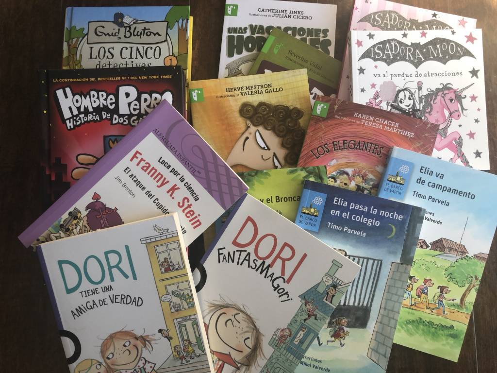Grade 3 Chapter Book Collection