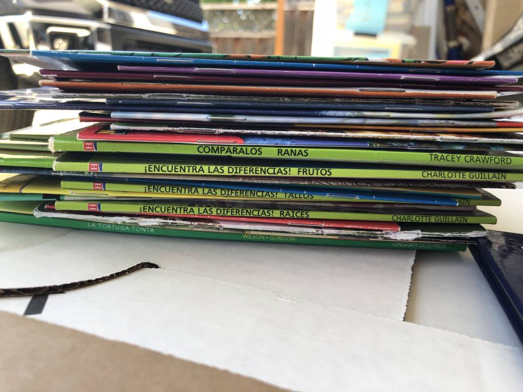 Previously LOVED leveled books (50 books)