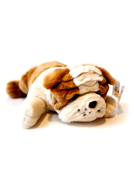Therapy Equipment Therapeutic Weighted Stuffed Animal