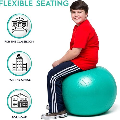 """Classroom Aid No Roll, Weighted Balance Ball Chair for Kids & Adults up to 5'6"""" Tall"""