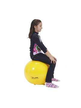Classroom Aid Gymnic Sit 'n' Gym Jr. Ball Chair