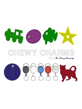 Chews & Chewlry Retractable Belt Buddy