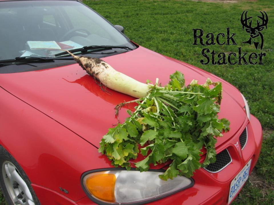 Rack Stacker Rack Stacker Big-Uns Radish 3lb