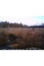 Rack Stacker Original Deer Feed 44lbs.
