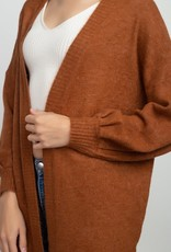 Burnt Sienna Brushed Knit Cardigan