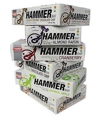Hammer Nutrition BAR