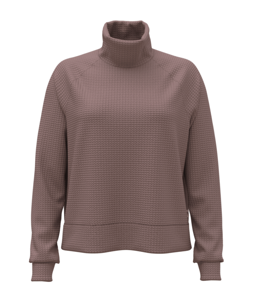 THE NORTH FACE The North Face Women's Mock Neck Cabot Long Sleeve