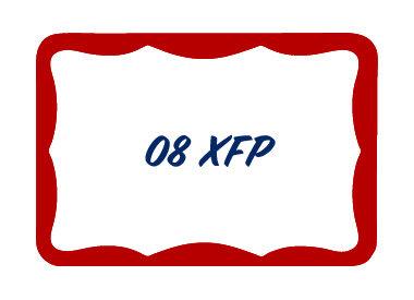 08 XFP