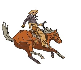 Hogeye Inc. The Cowboy Pin