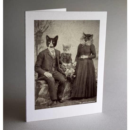 Antique Pet Photos Antique Photos Set of 6 Cat Family Note Cards