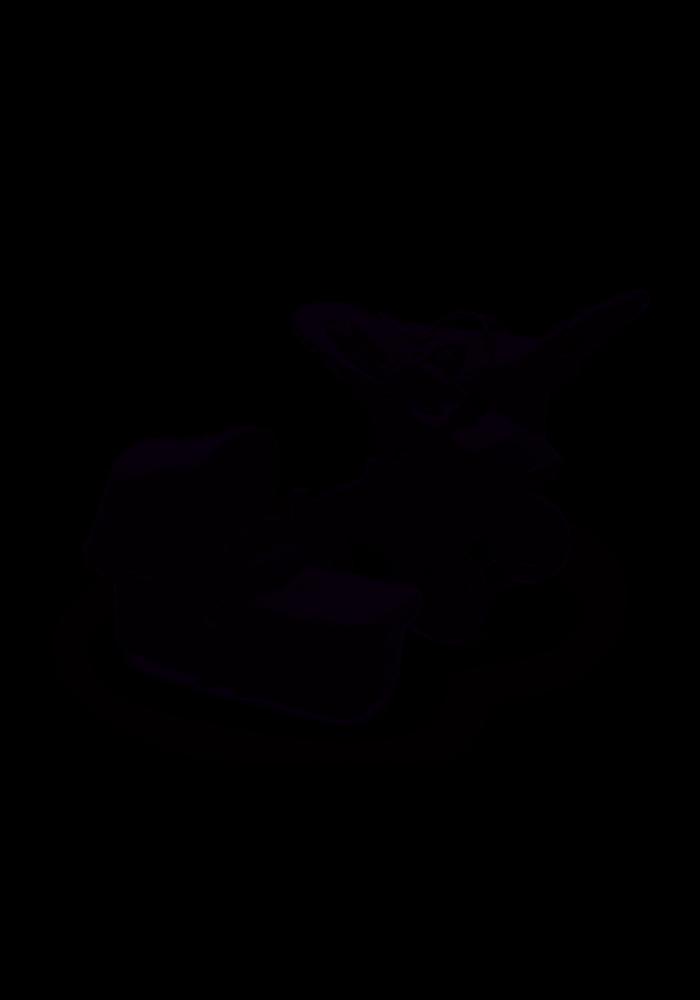 Bugaboo Donkey3 Mineral Mono Complete Black/Washed Black