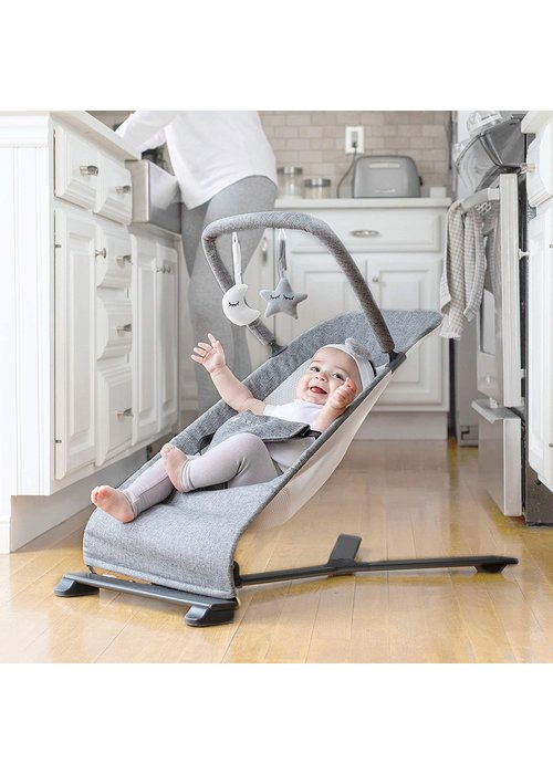 Baby Delight Baby Delight® Go with Me Alpine Deluxe Portable Baby Bouncer in Charcoal