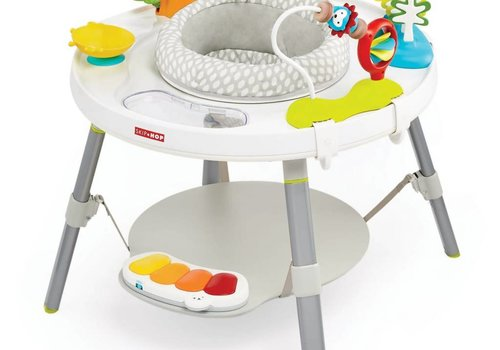 Skip Hop Skip Hop Explore & More Baby's View 3-Stage Activity Center