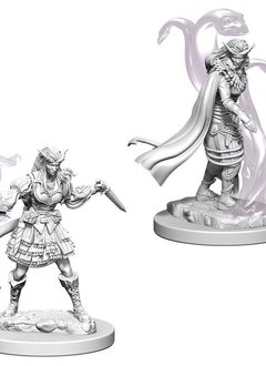 DND Unpainted Minis: Tiefling Female Sorcerer