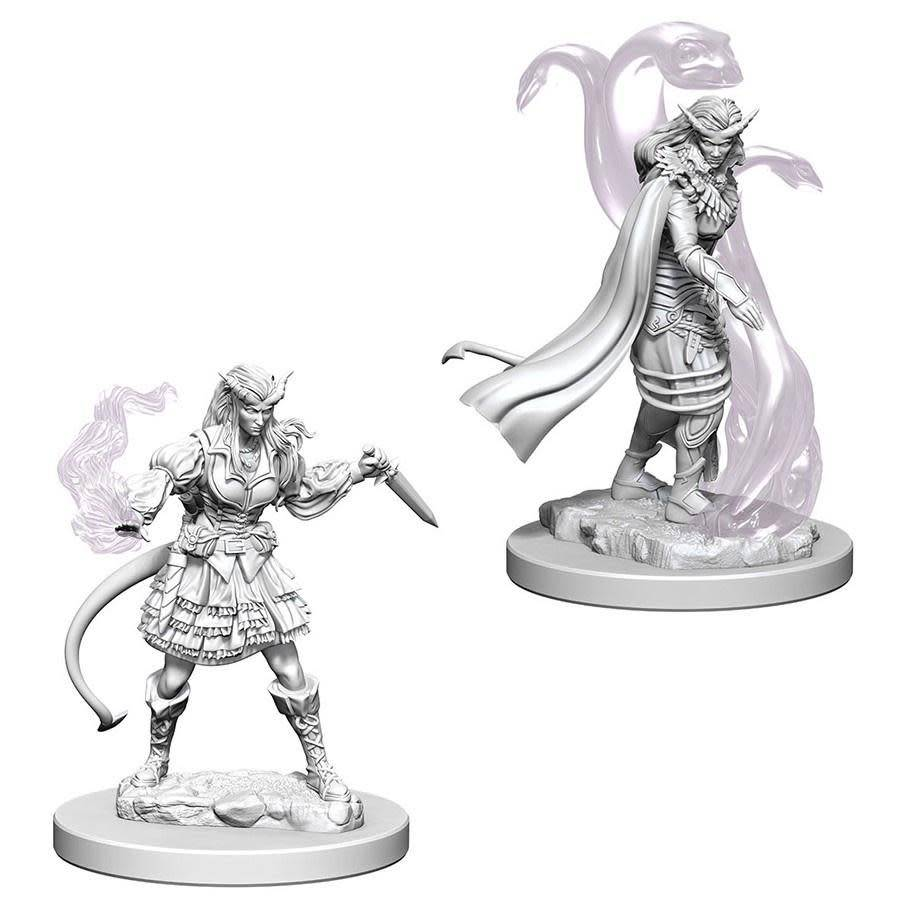 DND Unpainted Minis: Tiefling Female Sorcerer