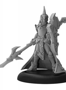Warmachine: Retribution of Scyrah Fane Knight Guardian Solo