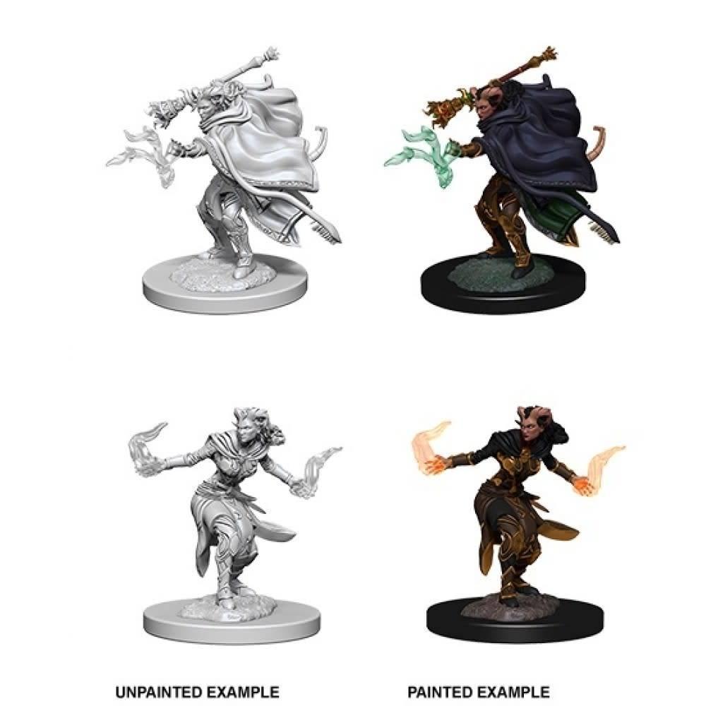 Unpainted Miniatures - Female Tiefling Warlock