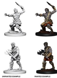 D&D Unpainted Minis - Nameless One