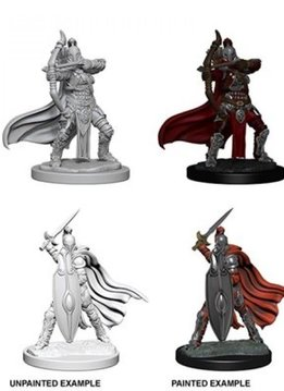 PF Unpainted Minis - Female Knights/Grey Maiden