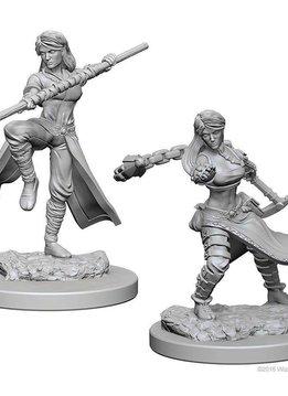 D and D Nolzur's Marvelous Miniatures -  female Wizard