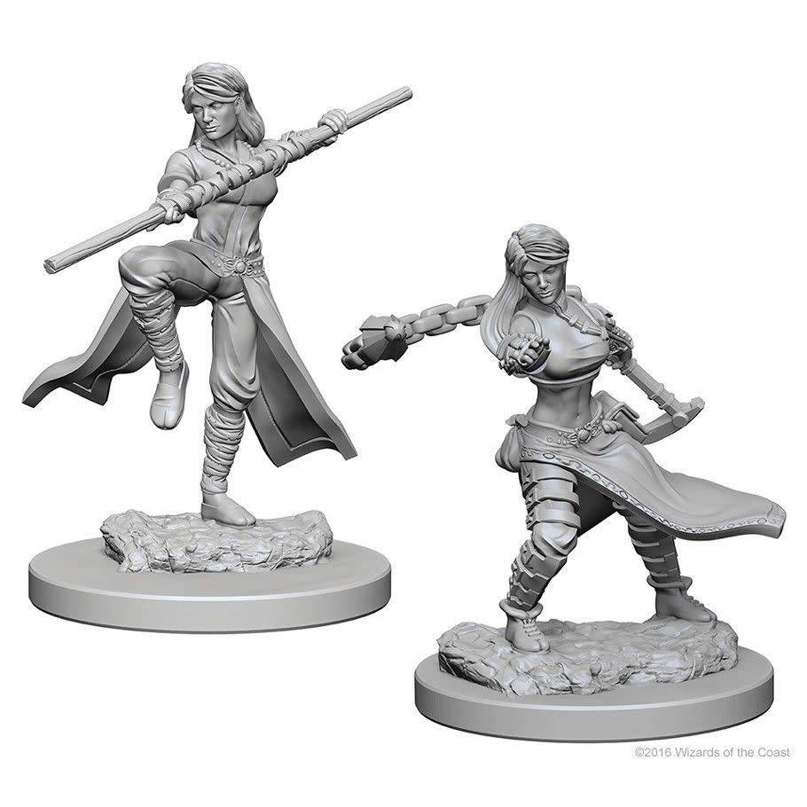 D and D Nolzur's Marvelous Miniatures -  female Wizard