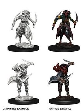 Tiefling Female Rogue D&D Unpainted Mini