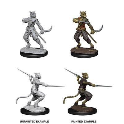Male Tabaxi Rogue D&D Unpainted Mini